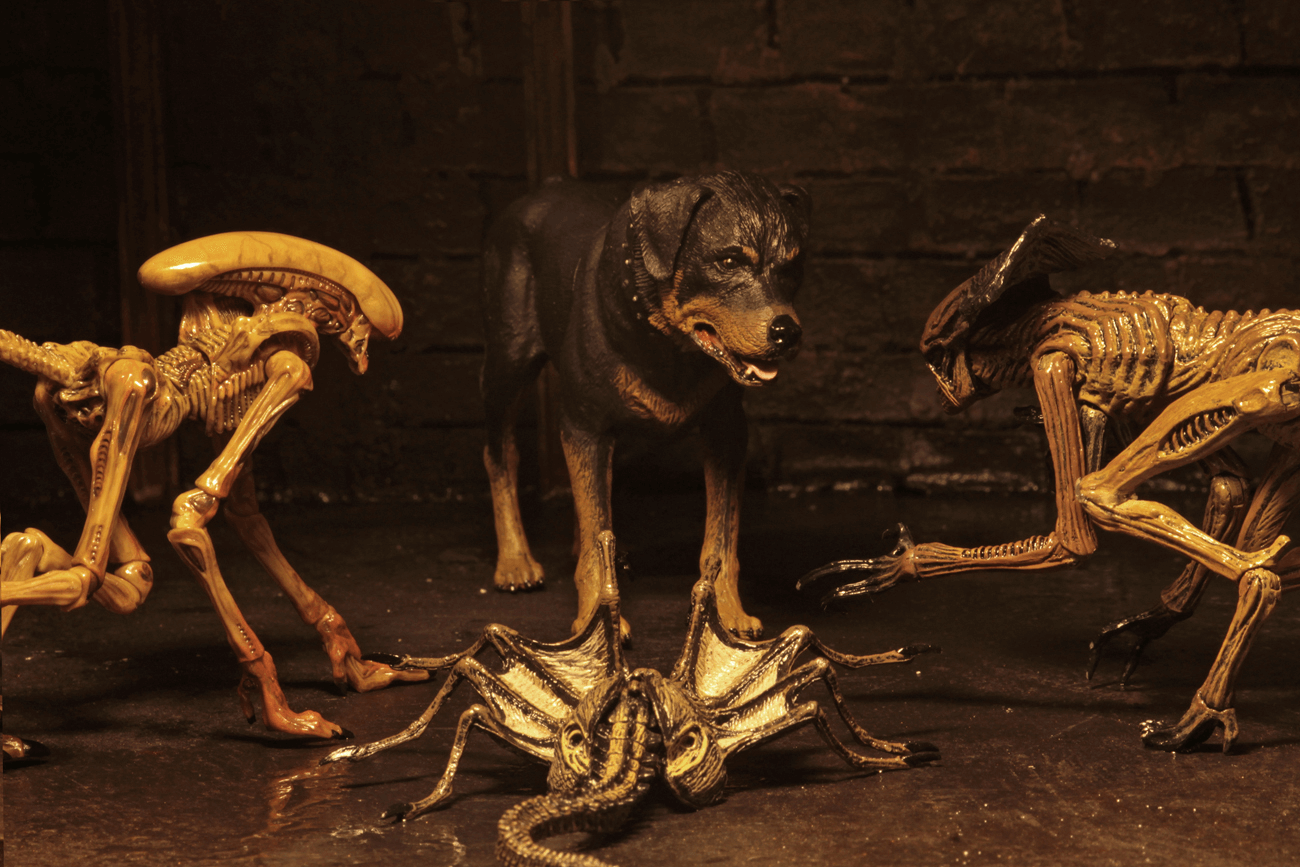 NECA's Alien 3 Creature Pack to Burst on to the Scene ...